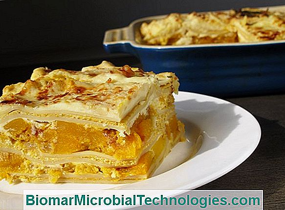 Lasagna With Pumpkin And Cream Cheese