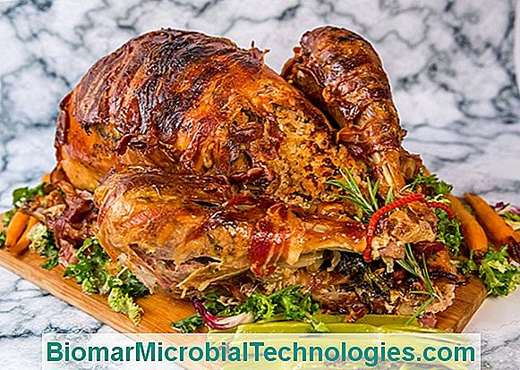 Turkey Stuffed With Dried Fruits