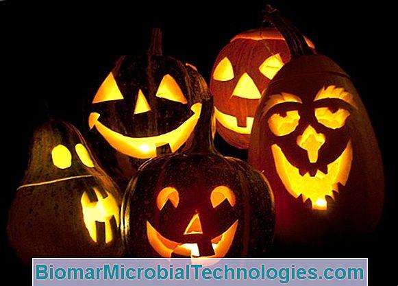 Immagine Zucca Di Halloween 94.Video Come Intagliare La Zucca Di Halloween Tutorial