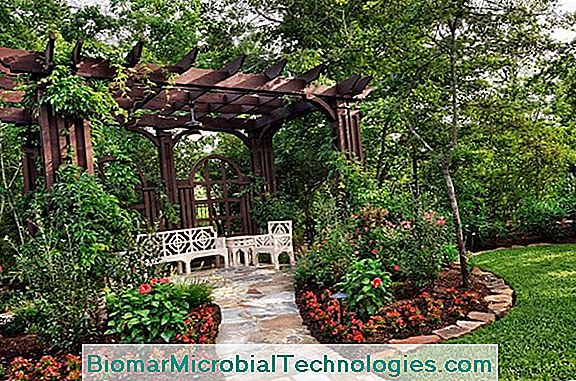Gazebo: 7 Modele Super-Decorative