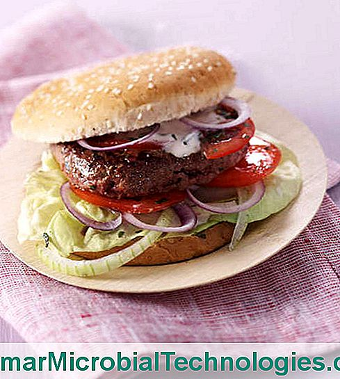 hamburger rundvlees cottage cheese