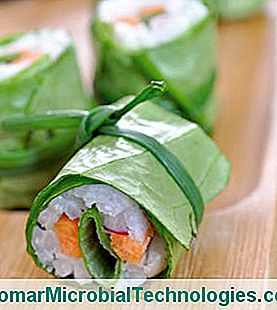 Lettuce Makis With Crunchy Vegetables