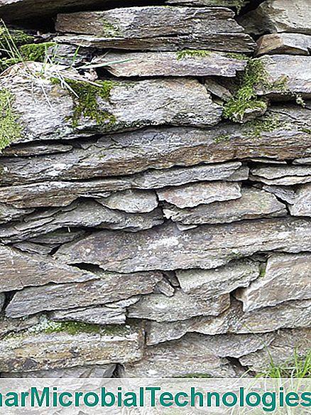 Come Costruire Un Muro Di Pietra.Come Costruire Un Muro A Secco Il Sito Del Giardinaggio Pratico