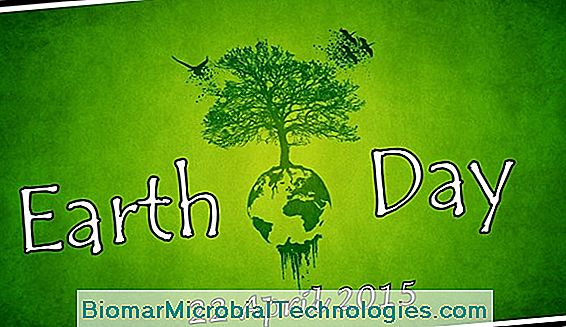 2016 International Earth Day Celebrates Trees