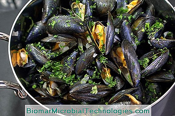 Moules Marinières: The Original Recipe
