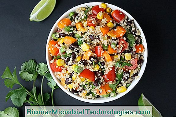 Rainbow Salad, Fresh And Colorful