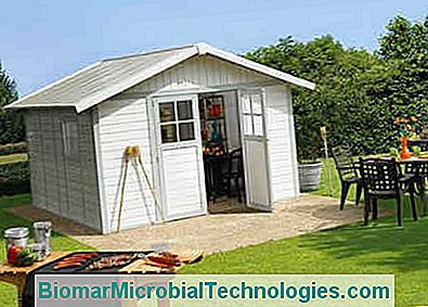 4 Things To Know When Choosing A Garden Shed