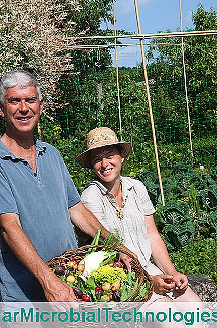 Portrait of Charles and Perrine Hervé-Gruyer, Bec Hellouin Biological Farm / Credit: DR