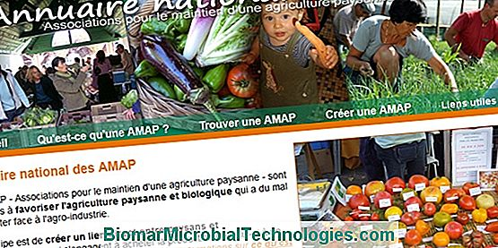 National Directory of AMAP